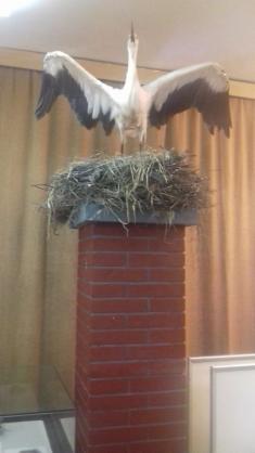 Ornitologická stanice Přerov - výlet